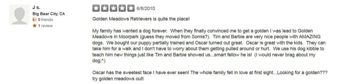 Golden Meadows Retrievers Yelp Review 17