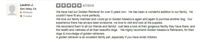 Golden Meadows Retrievers Yelp Review 18