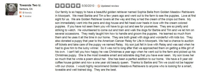 Golden Meadows Retrievers Yelp Review 20