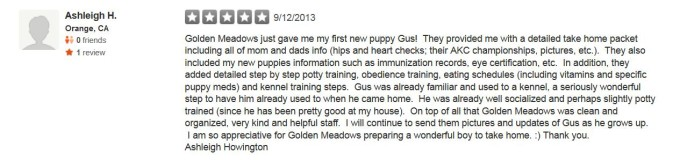 Golden Meadows Retrievers Yelp Review 3