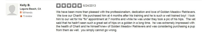 Golden Meadows Retrievers Yelp Review 4