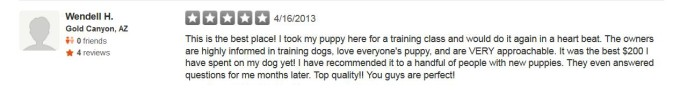 Golden Meadows Retrievers Yelp Review 7