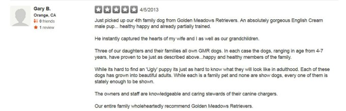 Golden Meadows Retrievers Yelp Review 8