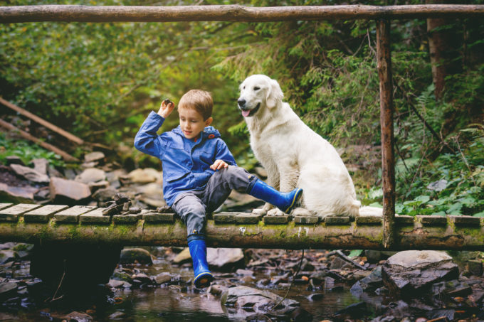 5 Ways Dogs Improve Our Kids' Lives | Golden Meadows Retrievers